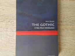 The Gothic A Very Short Introduction Abstract by Michael Wheatley